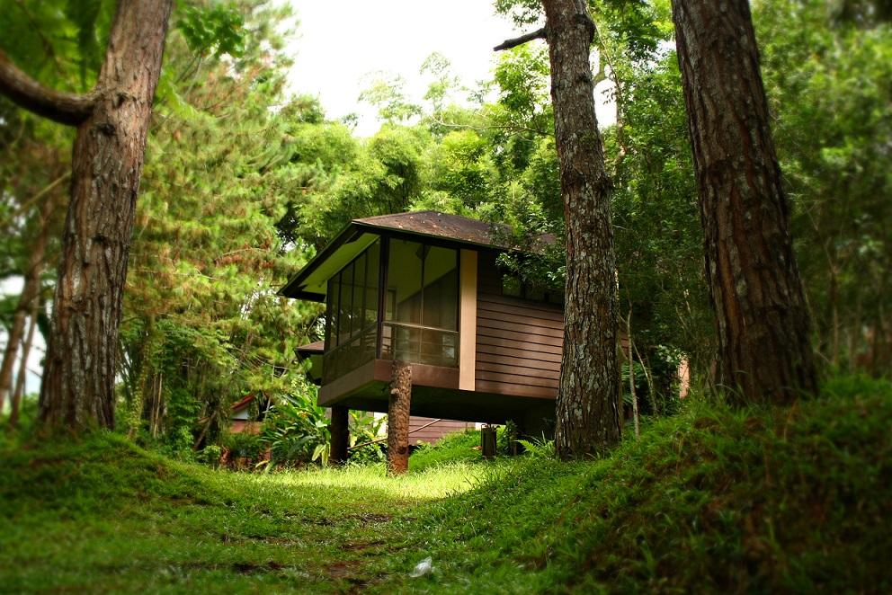 Vista Cottage
